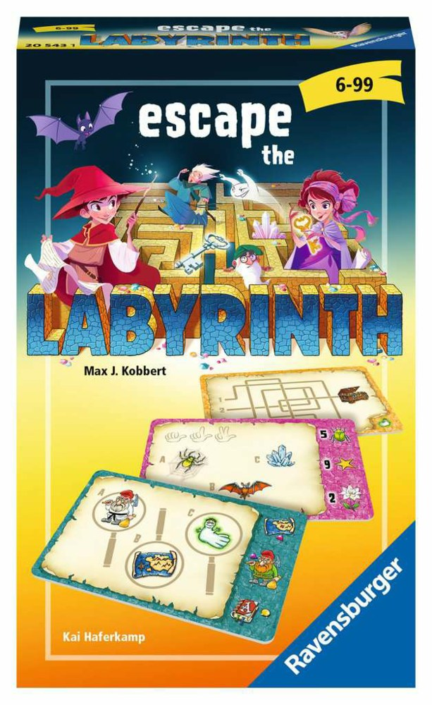 103-20543 Escape the Labyrinth