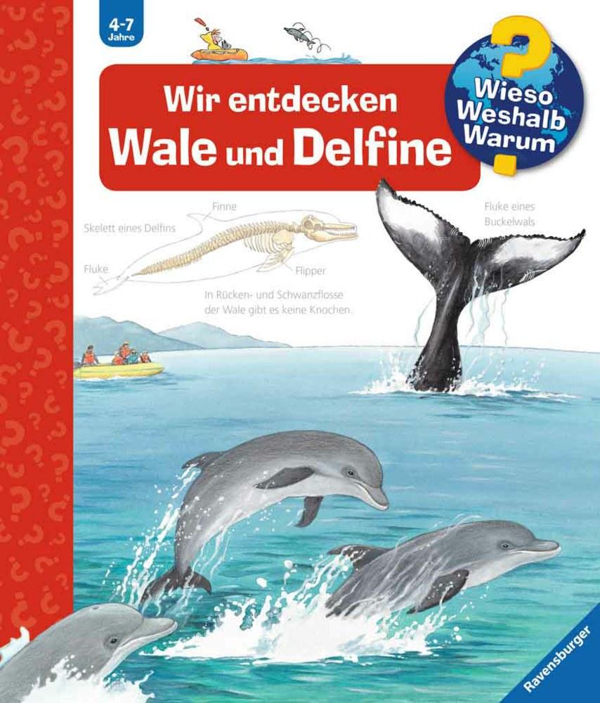 Ravensburger Buchverlag 32775 9783473327751 Wir Entdecken Wale Und