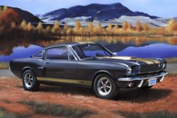 041-07242 Shelby Mustang GT 350 H Revell