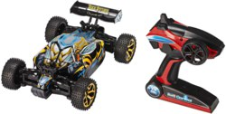 041-24617 RC Offroader Buggy 4WD Car Bee
