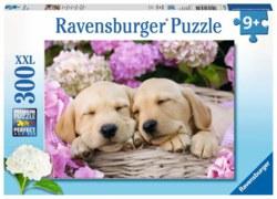 103-13235 Süße Hunde im Körbchen Ravensb