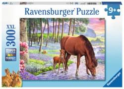 103-13242 Wilde Schönheit Ravensburger P