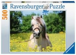 103-15038 Pferd im Rapsfeld Ravensburger
