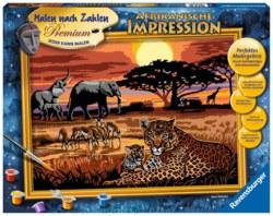 103-28819 Malen nach Zahlen - Afrikanisc