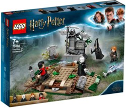 150-75965 Der Aufstieg von Voldemort™ LE