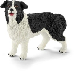167-16840 Border-Collie