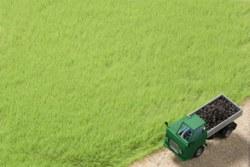 335-75613 Grasfasern hellgrün 4,5 mm Auh